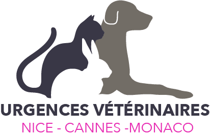 Urgences VETERINAIRES Nice